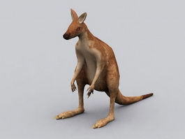 Red Kangaroo 3d preview