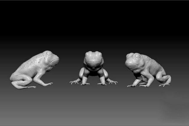 Cute Frog 3d rendering