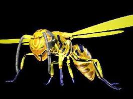 Honey Bee 3d model preview