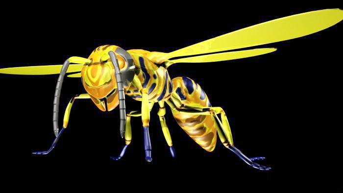 Honey Bee 3d rendering
