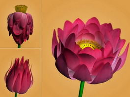 Lotus Flower Rig 3d preview