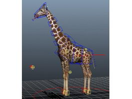 Beautiful Giraffe Rig 3d preview