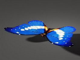 Blue Butterfly 3d preview
