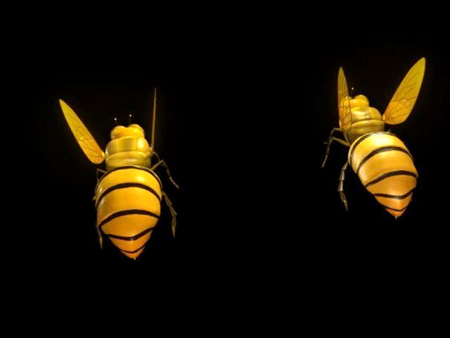 Honey Bee 3d rendering