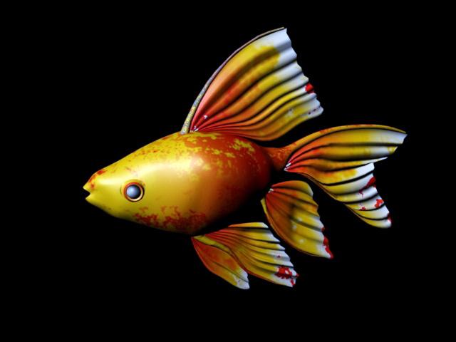 Aquarium Goldfish 3d rendering