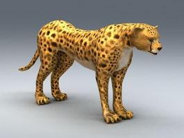African Cheetah 3d preview