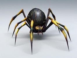 Black and Yellow Spider 3d preview