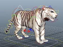 White Tiger Rigged 3d preview