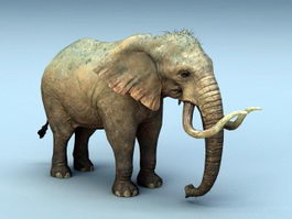Mammoth Elephant 3d preview