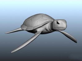 Sea Turtle 3d preview