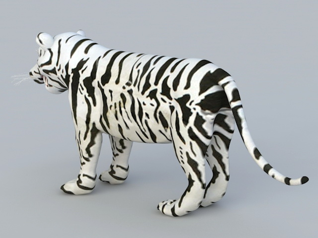 Baby White Tiger 3d rendering