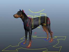 Doberman Dog Rig 3d preview
