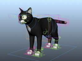 Black Cat Rigged 3d model preview