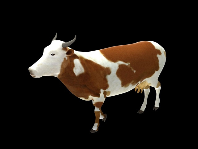 Guernsey Cow 3d rendering