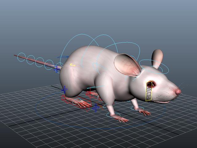 Cute Rat Rig 3d rendering