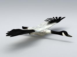 Fly Swan 3d preview