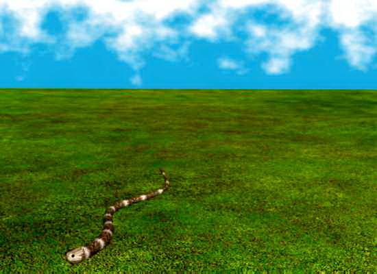Animated Snake 3d rendering