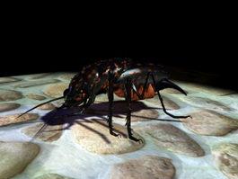 Black Bug 3d model preview