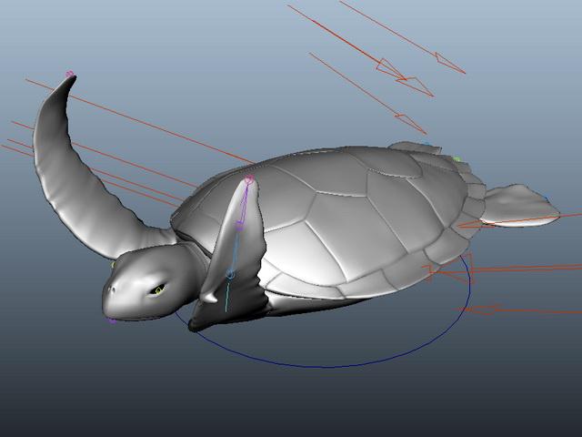 Sea Turtle Rig 3d rendering