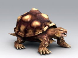 Old Turtle 3d preview