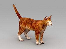 Orange Tabby Cat 3d preview