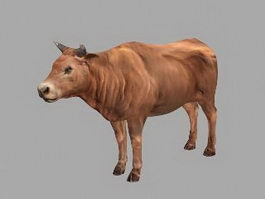 Domestic Cattle 3d preview