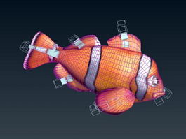 Clownfish Animated Rig 3d model preview
