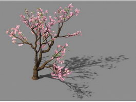 Pink Flowering Peach Tree 3d preview