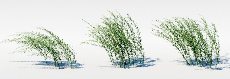 Unnamed Grass 3d rendering