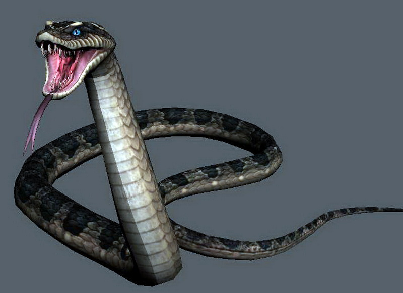 Snake Attacking Rigged and Animated 3d rendering