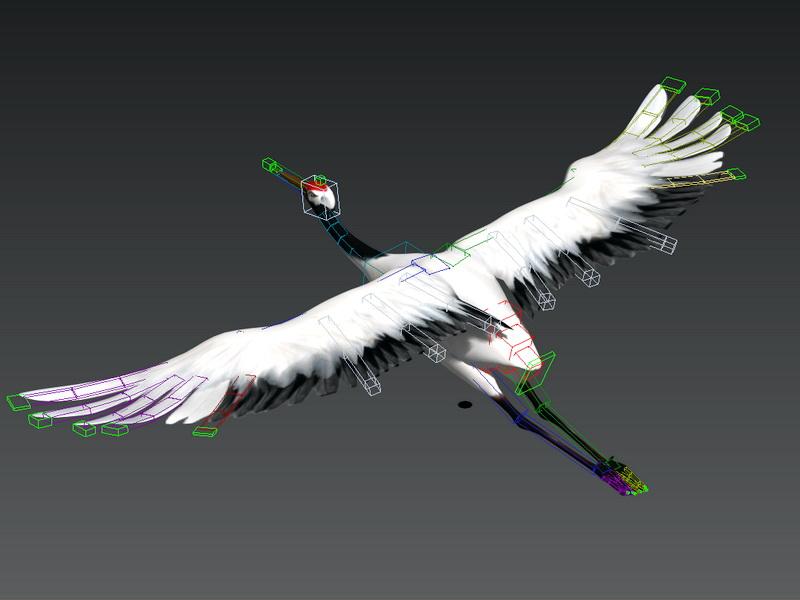 Crane Bird Animated Rig 3d rendering
