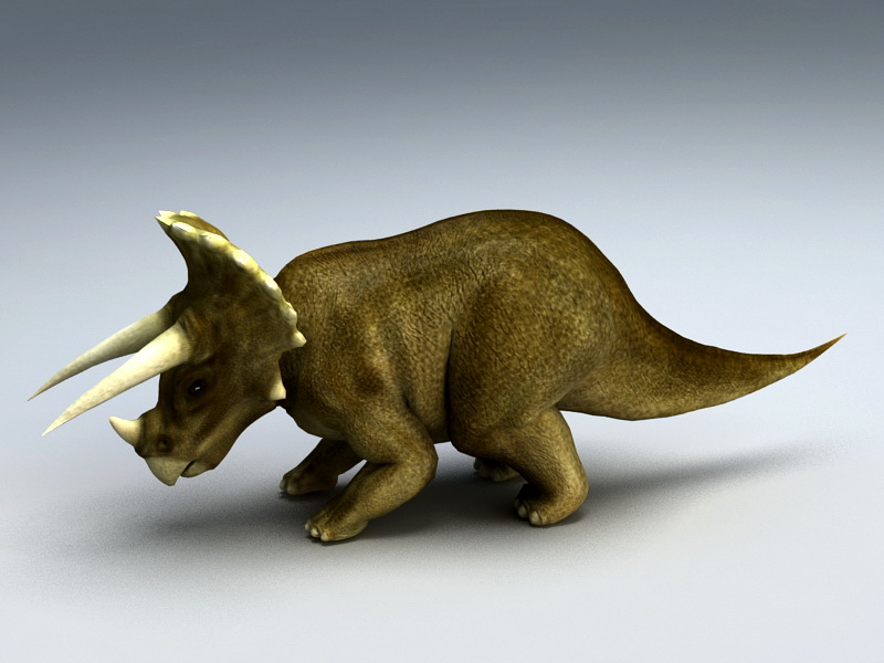 Triceratops Animated & Rig 3d rendering
