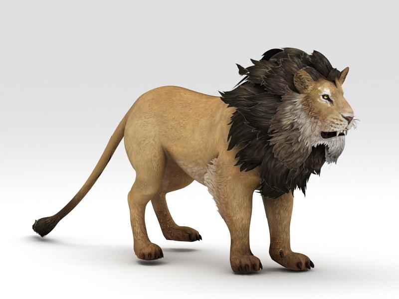 Abyssinian Lion 3d rendering