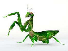Praying Mantis 3d model preview