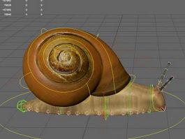 Snail Rig 3d preview