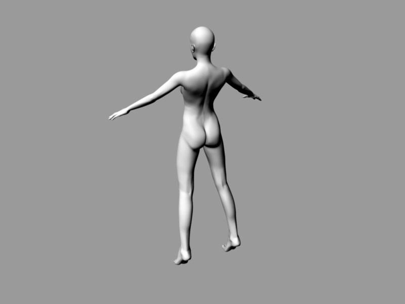 Female Body Base 3d rendering