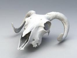 Ram Skull 3d preview