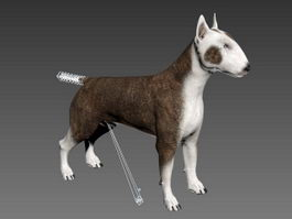 Bull Terrier Dog Rig 3d preview
