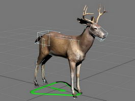 Swamp Deer Rig 3d preview