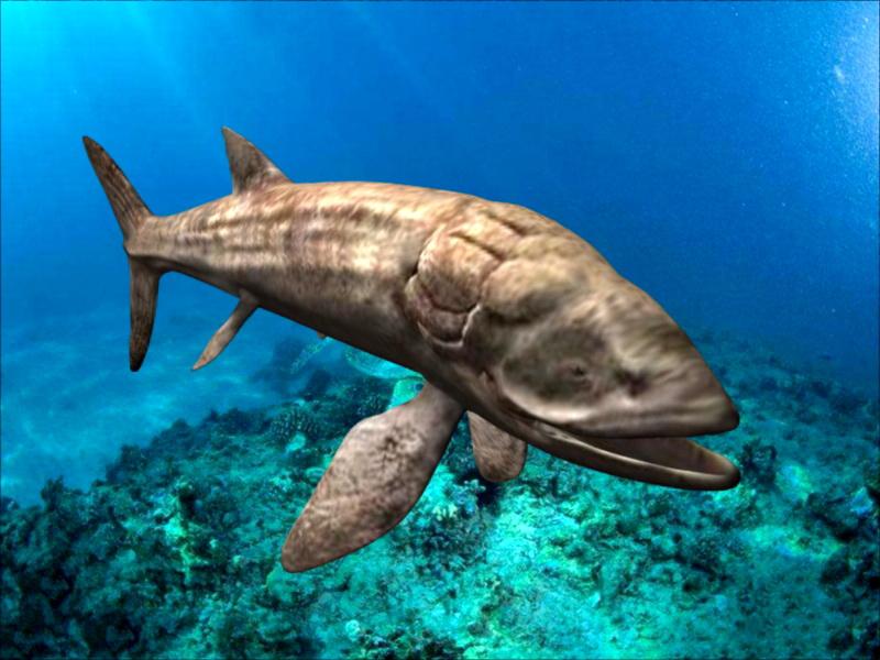 Leedsichthys Fish 3d rendering