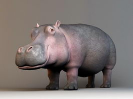 Hippopotamus Amphibius Rig 3d preview