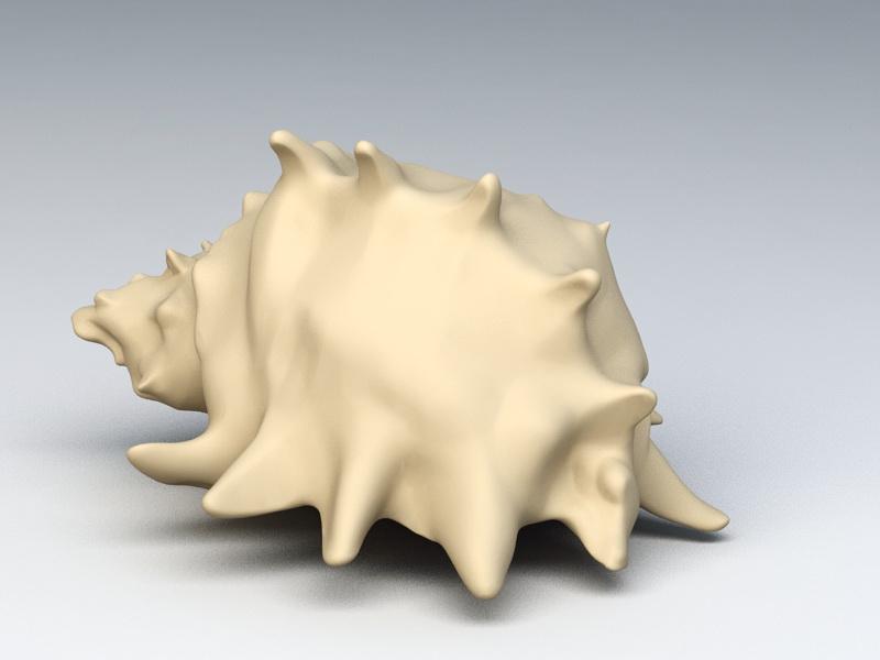 Whelk Shell 3d rendering