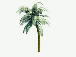 Palm Tree 3d preview