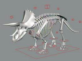 Triceratops Skeleton Rig 3d preview