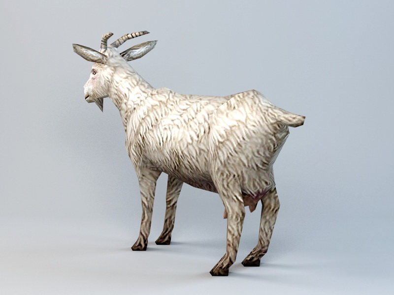 Low Poly Goat 3d rendering