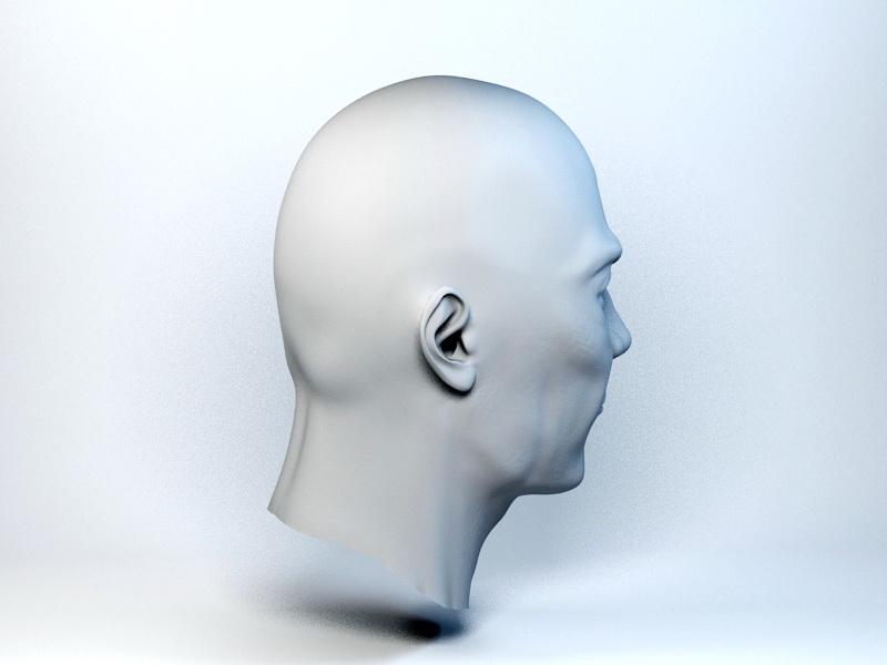 Male Head Base Mesh 3d rendering