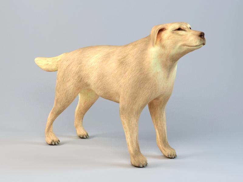 Boxer Dog 3d rendering