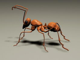 Red Ant 3d preview