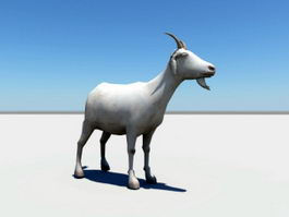 Mountain Goat 3d preview