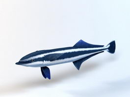 Blue Shark 3d preview